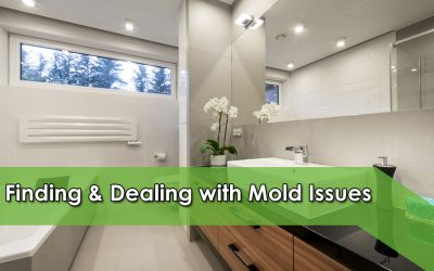 Finding & Dealing with Mold Issues